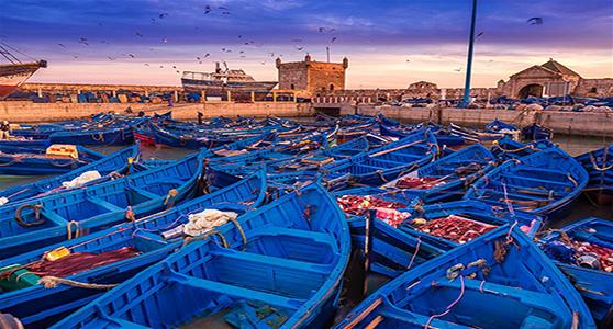Excursion Essaouira-Marrakech