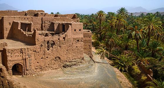 Tour de Kasbah M'hamid